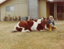 Linda and Pachoto, her first pinto, second pony.