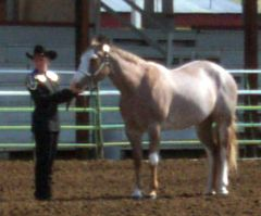 Berry in Showmanship with Linda